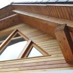 Lesena fasada Bitnje strop