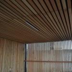Lesena fasada Kamnik strop