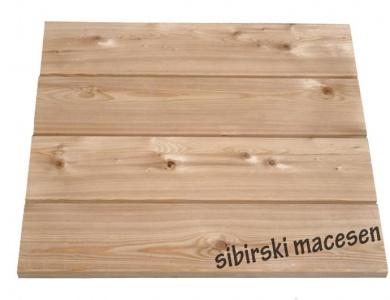 Sibirski macesen 1.B kvalitete