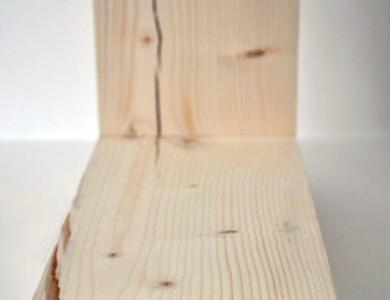 sredinski les